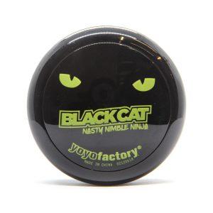 yoyo black cat
